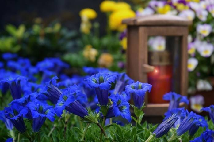 Почему беременным и детям нельзя ходить на кладбище. Или можно?