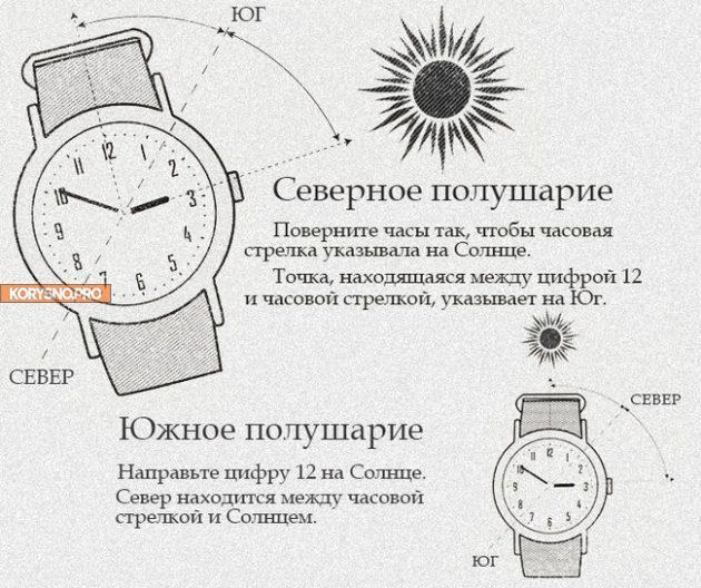 Лайфхак: как определить стороны света по стрелке часов и солнцу?