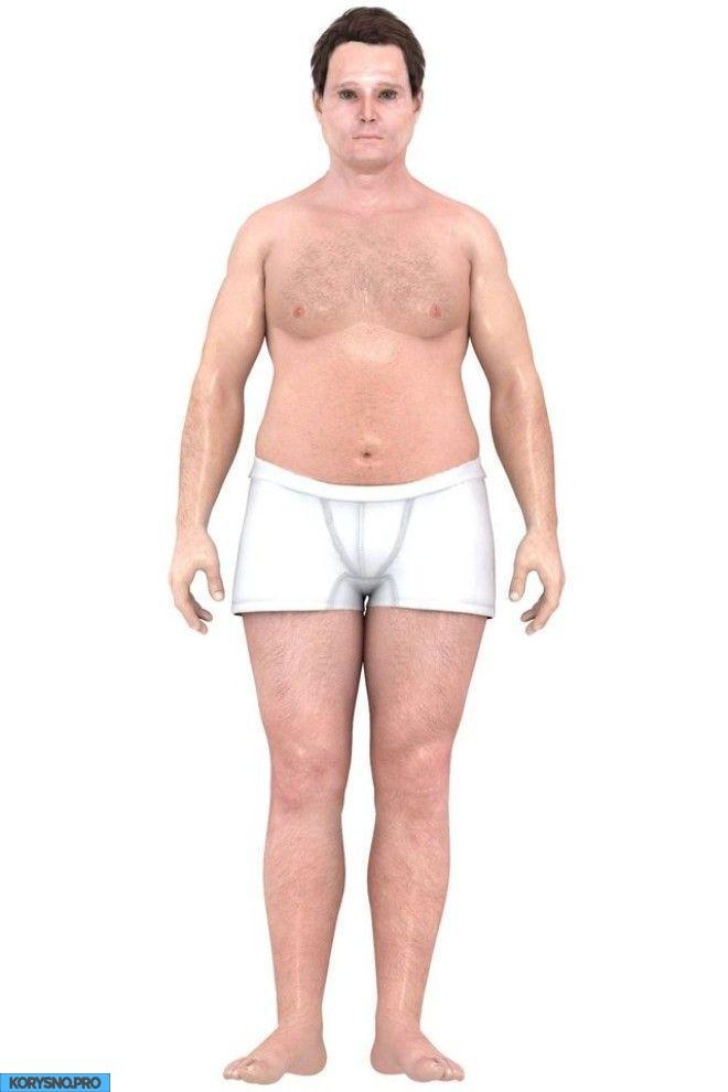 Как за последние 150 лет менялись представления об идеальном мужском теле