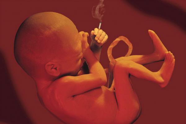 Курение во время беременности — как отражается на ребенке и какой вред может нанести