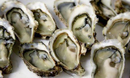 Любите морепродукты? Тогда вы регулярно едите пластик!