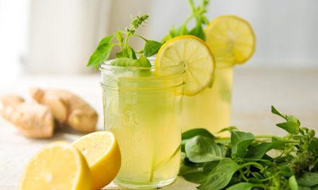 Лучшие рецепты домашнего лимонада