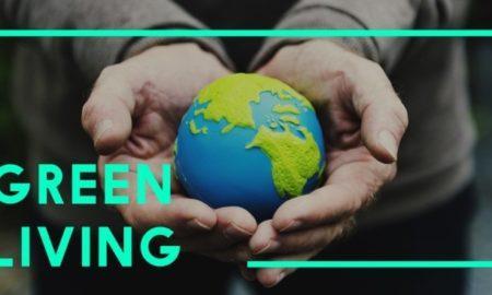 5 идей для экобизнеса: как заработать, заботясь о природе
