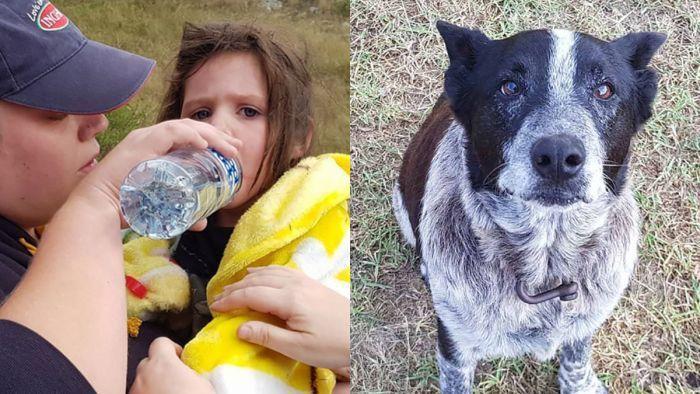 Пропавшую девочку целых 17 часов охранял старый слепой пес