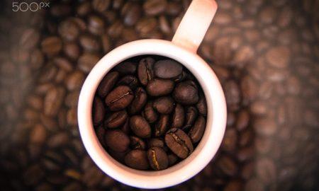 Вкусный кофе в зернах. Где купить лучший?